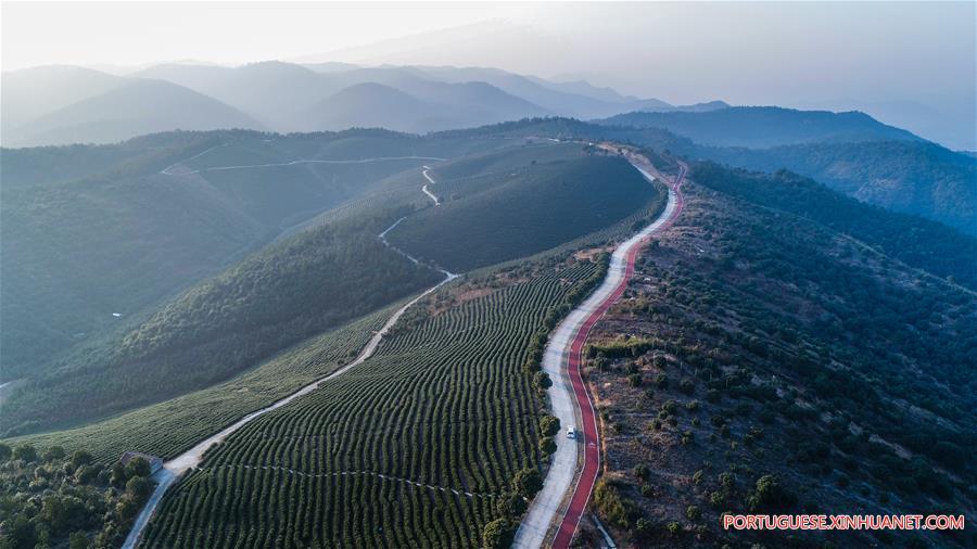 Via verde em Zhejiang torna-se popular resort rural para visitantes